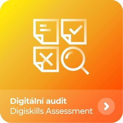 Digiskills Assessment